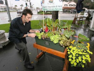 [20100318 (LA/A5) -- BIG PLANS: Mike Saraylian organizes one of the Harvest to Home vegetable and herb gardens, a self-contained organic garden box. -- PHOTOGRAPHER: DON LEACH | 20100122 (LA/A10) -- beautiful: Mike Saraylian organizes one of the Harvest to Home vegetable and herb gardens, a self-contained organic garden box. The systems require no dirt. -- PHOTOGRAPHER: Photos by DON LEACH |] *** [Mike Saraylian organizes one of the Harvest to Home vegetable and herb gardens, a self-contained organic garden box. The systems require no dirt.]