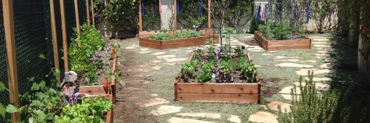 Our customers love their raised bed garden