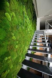 moss_wall_installation