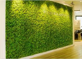 moss wall installation orange county