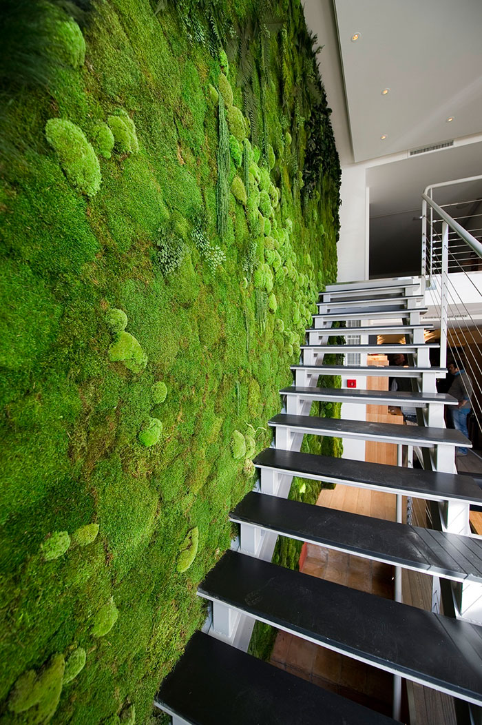 Moss Walls Harvest to Home
