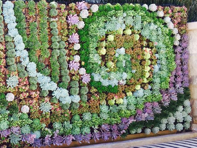 garden design and green walls