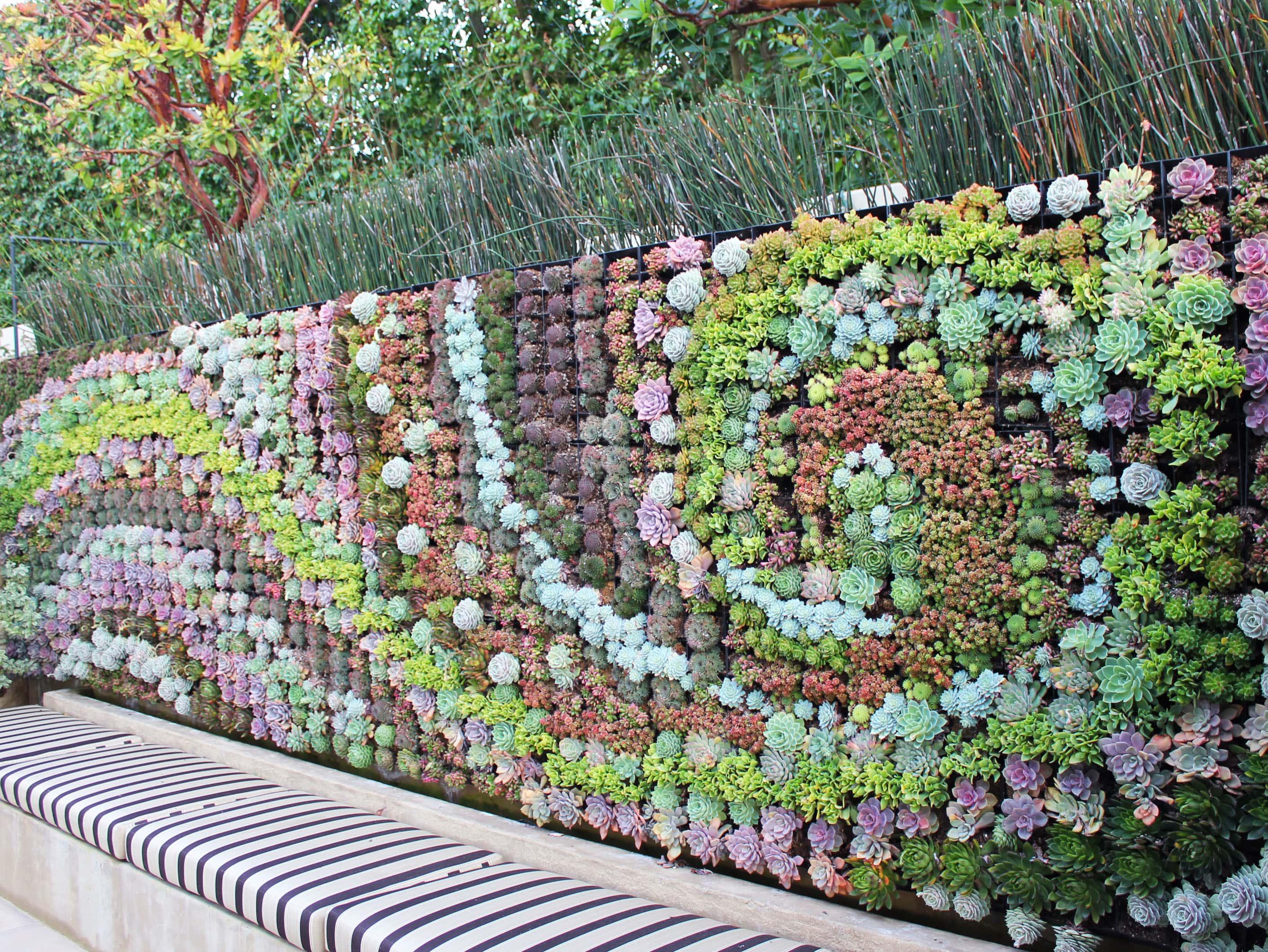 organic vegetable u0026 herb garden service