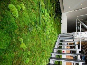 moss wall22 (1)